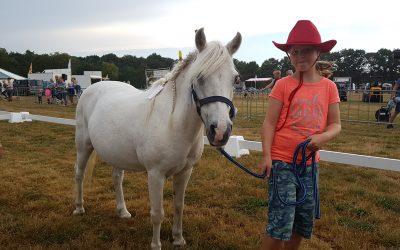 Jaarlijkse paardenconcours Bakkeveen