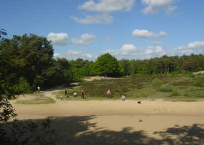 zandvlakte